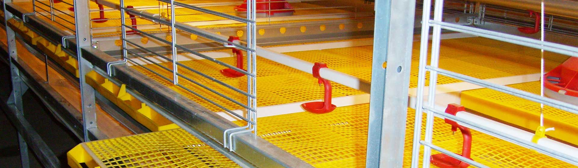 Broiler chicken cage system