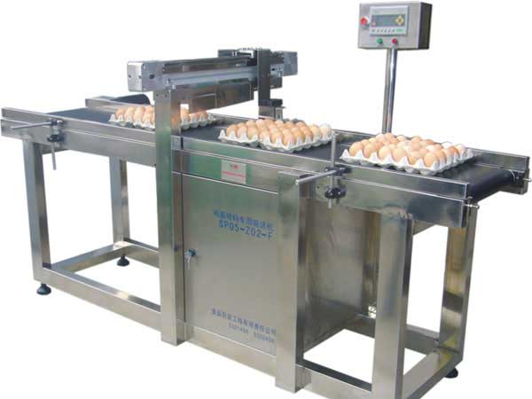 Poultry eggs inkjet printer